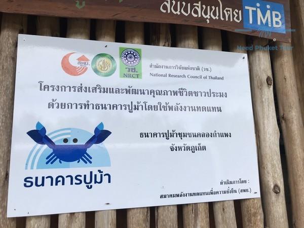 泰国亲子活动-螃蟹银行