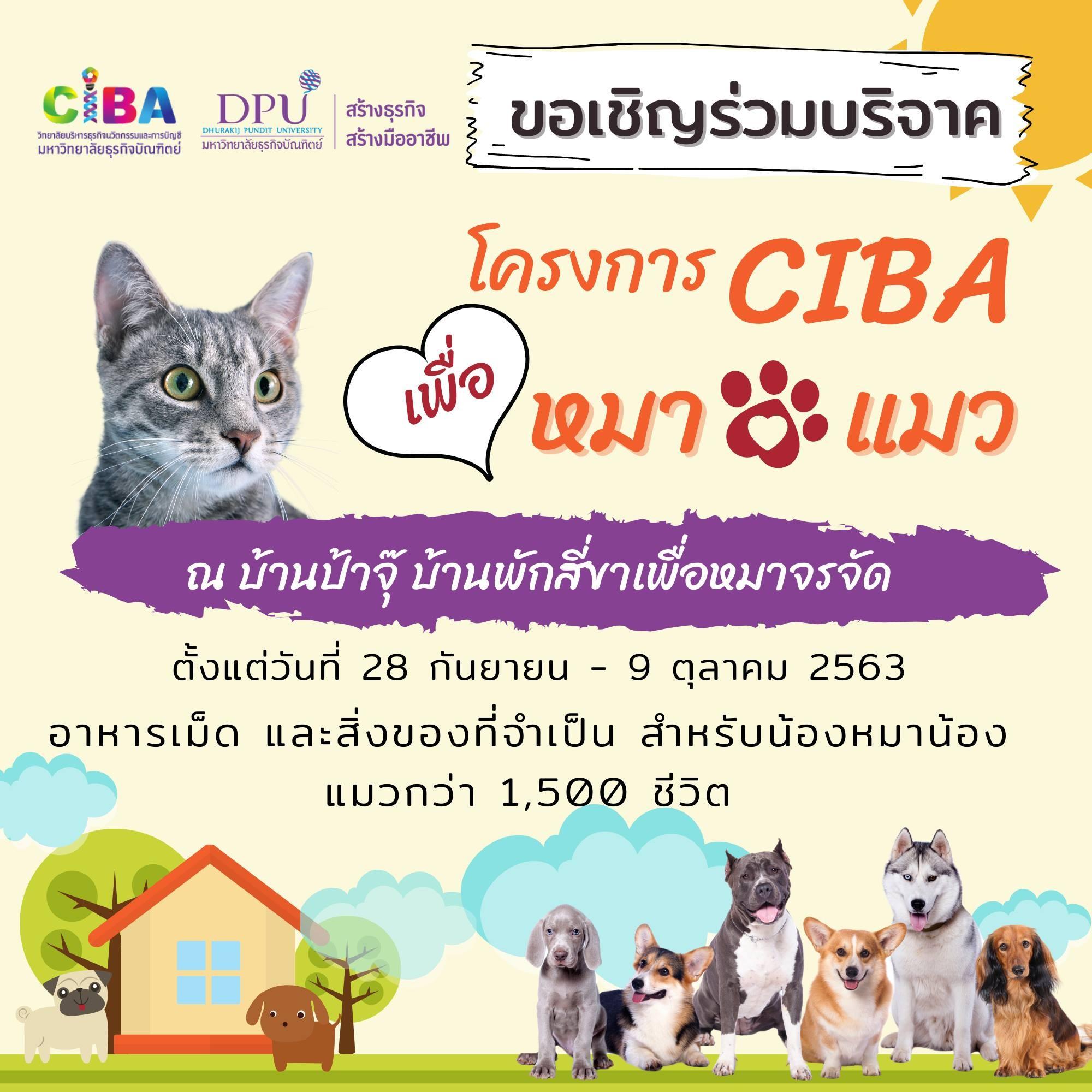 CIBA学院Tiger邀请您参与爱心捐助